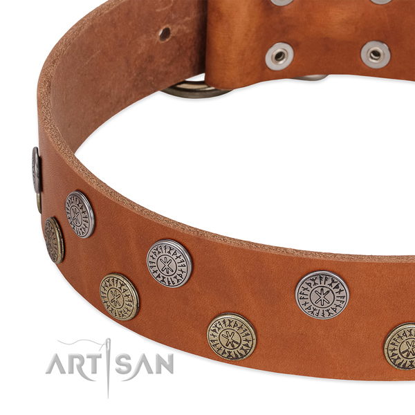 Top notch natural leather collar for everyday use your dog