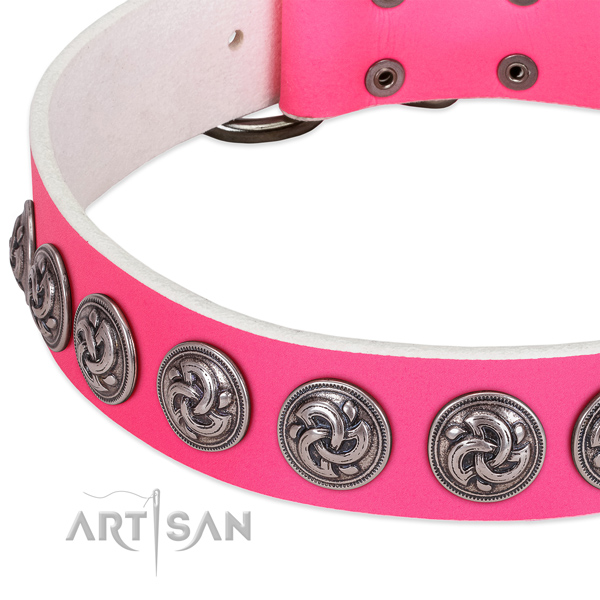 Extraordinary genuine leather collar for your four-legged friend stylish walks
