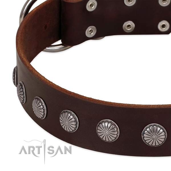 Soft to touch leather dog collar with adornments for easy wearing