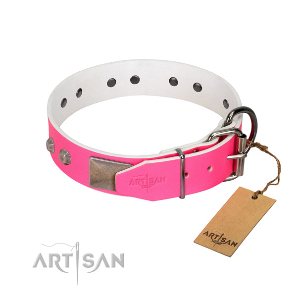 Daily use dog collar of natural leather with unusual decorations