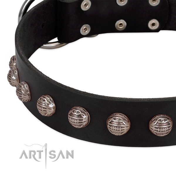 Genuine leather collar with incredible adornments for your four-legged friend