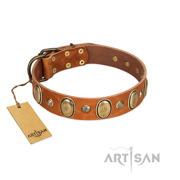 Genuine leather dog collar of best quality material with extraordinary adornments