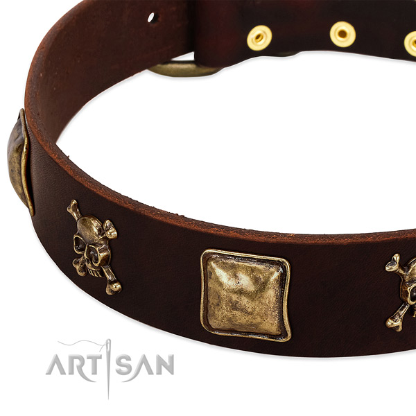Top notch full grain genuine leather dog collar with remarkable decorations