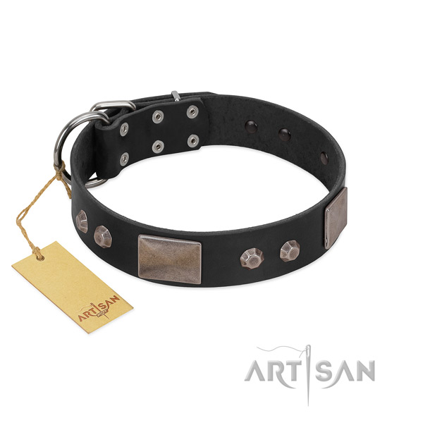 Stylish natural leather dog collar with rust-proof fittings