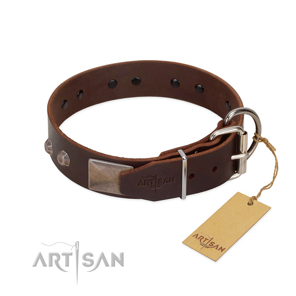 Exceptional full grain leather dog collar for everyday walking your canine