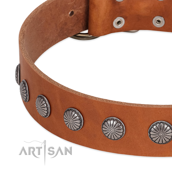 Quality genuine leather dog collar with embellishments for easy wearing