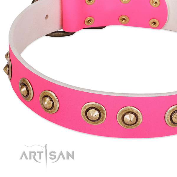 Corrosion proof adornments on full grain natural leather dog collar for your doggie