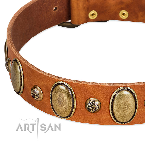 Natural leather dog collar with stylish studs