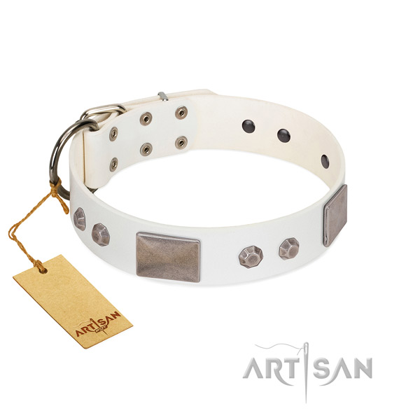 Perfect fit full grain leather collar for your attractive doggie