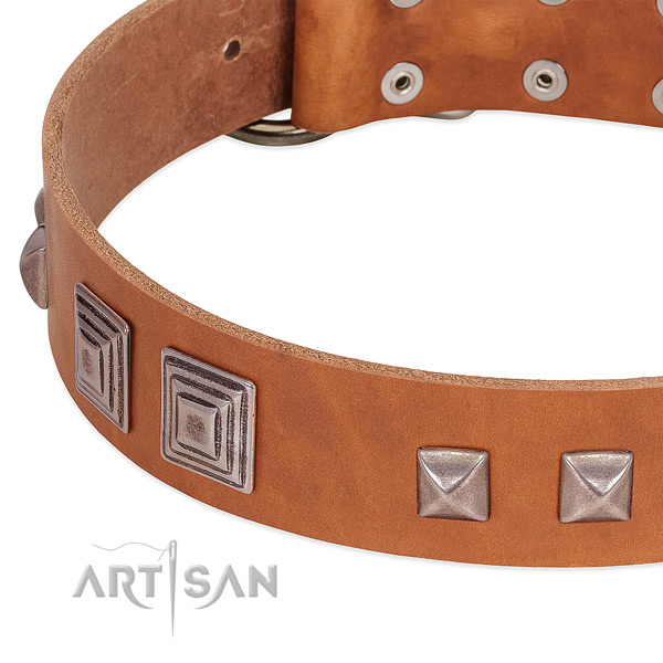 Corrosion proof fittings on full grain natural leather dog collar for comfortable wearing