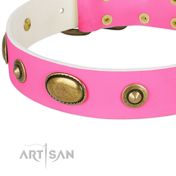 Rust resistant embellishments on full grain natural leather dog collar for your dog