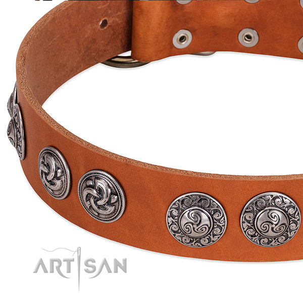 Unusual full grain natural leather dog collar for walking