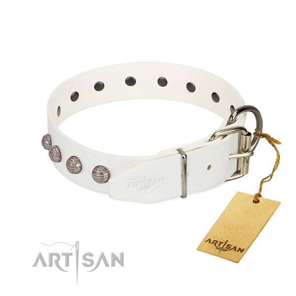 Full grain genuine leather dog collar of flexible material with inimitable studs