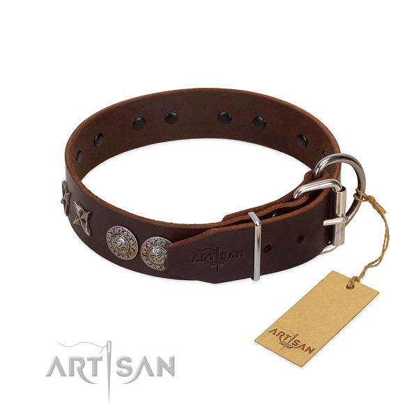 Walking dog collar of leather with incredible studs