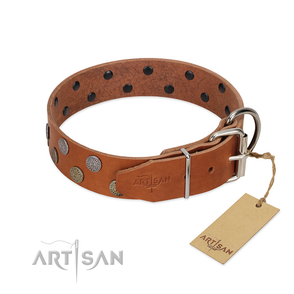 Corrosion resistant hardware on full grain natural leather dog collar for everyday walking