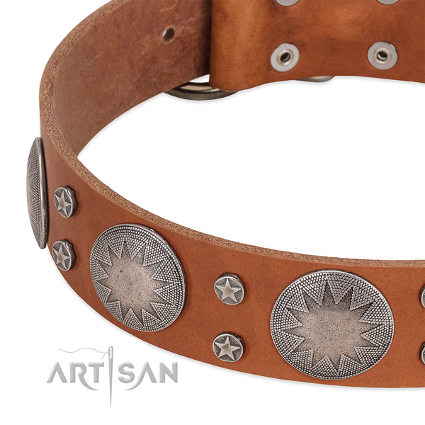 Top rate leather dog collar with rust-proof traditional buckle