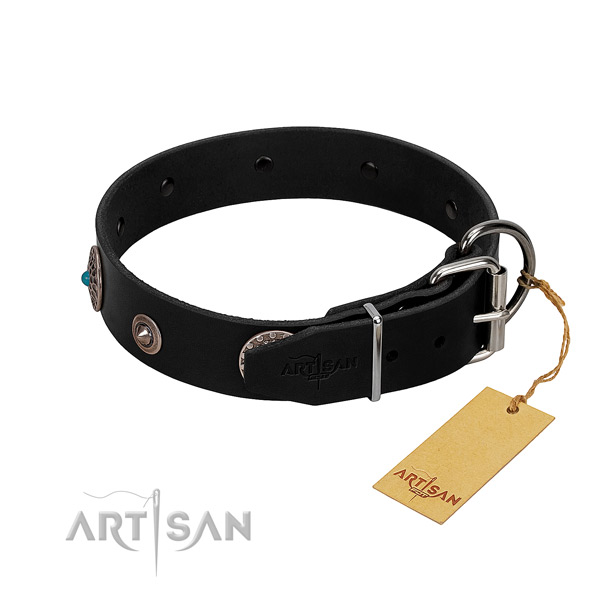 Exquisite adorned leather dog collar