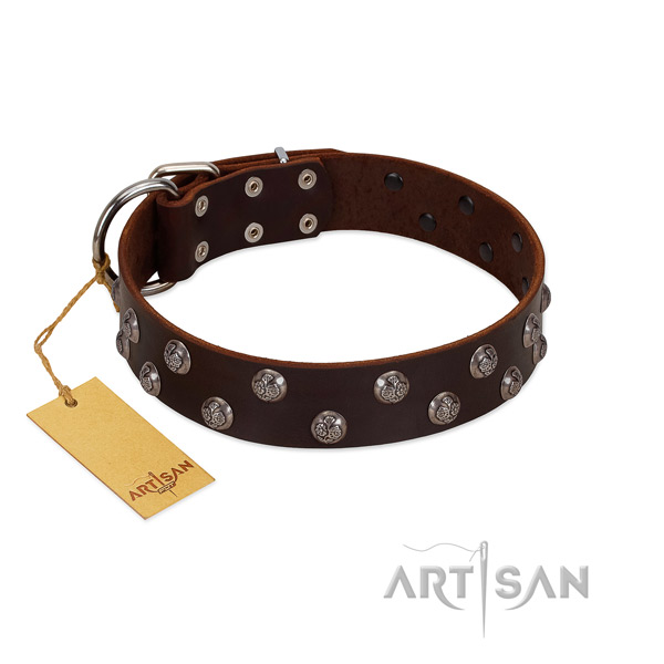 Top rate leather dog collar with decorations
