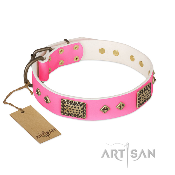 Easy to adjust genuine leather dog collar for daily walking your doggie