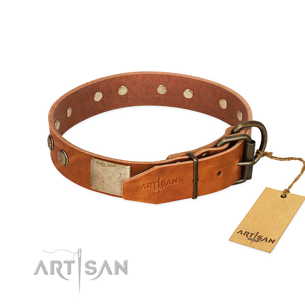 Rust-proof adornments on comfortable wearing dog collar