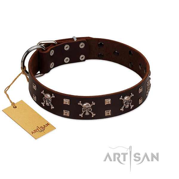 High quality full grain leather dog collar handcrafted for your dog
