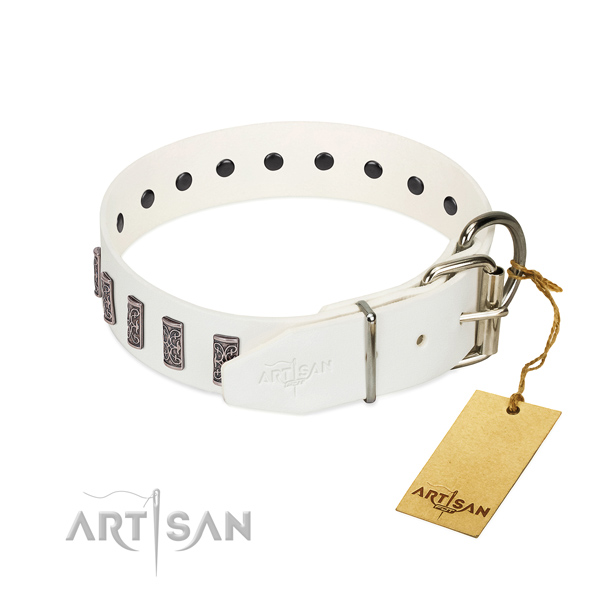 Corrosion resistant buckle on leather dog collar for stylish walking your doggie