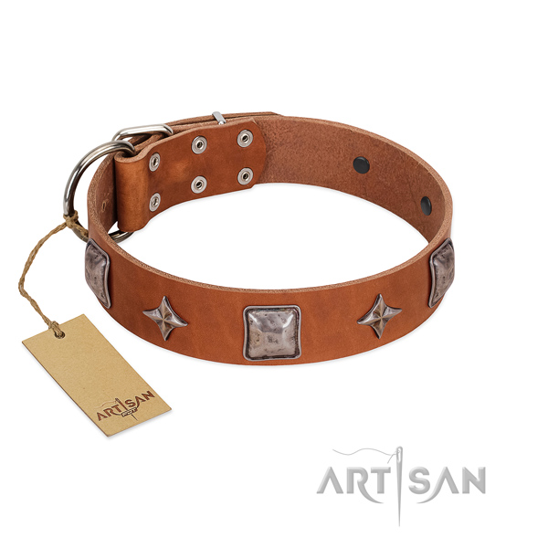 Top rate full grain genuine leather dog collar with embellishments for walking