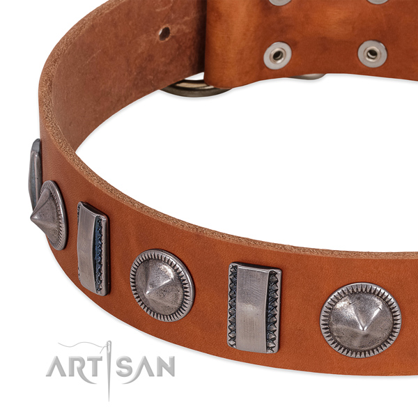 Stylish design embellished full grain genuine leather dog collar for everyday walking