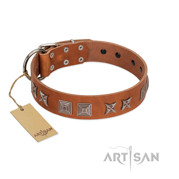 Genuine leather dog collar with designer adornments created dog