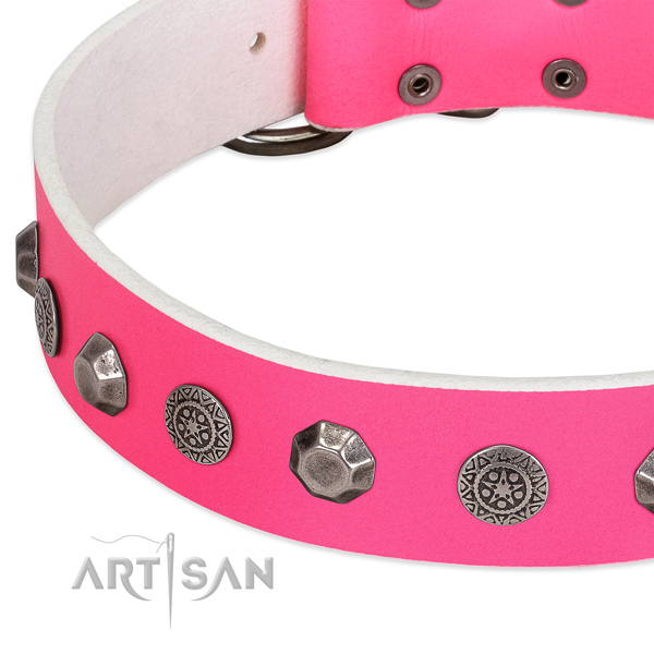 Remarkable genuine leather collar for your pet stylish walking