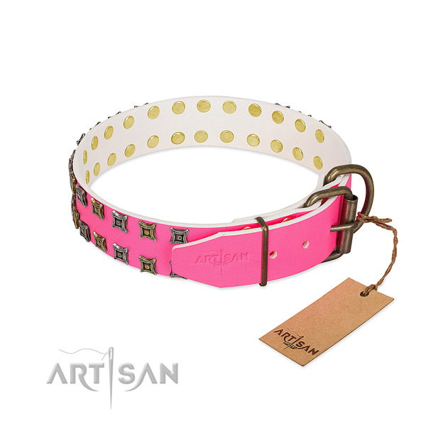 Full grain natural leather collar with extraordinary adornments for your four-legged friend