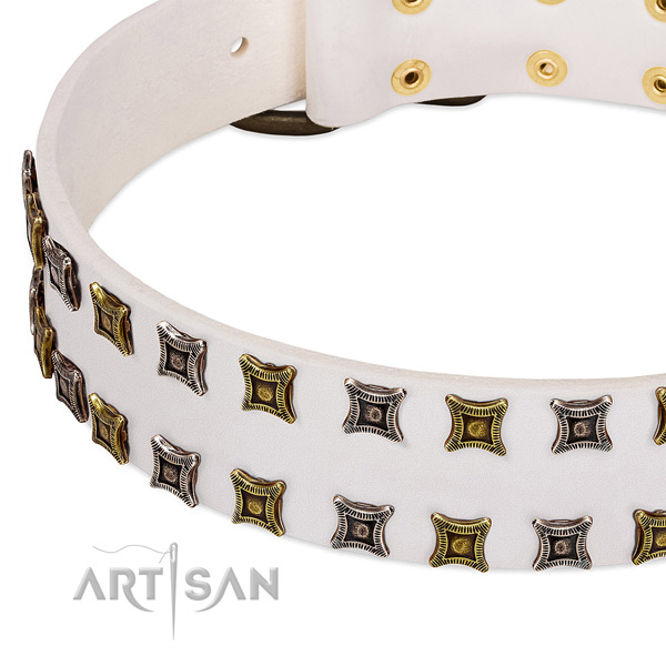 Top notch genuine leather dog collar for your handsome doggie
