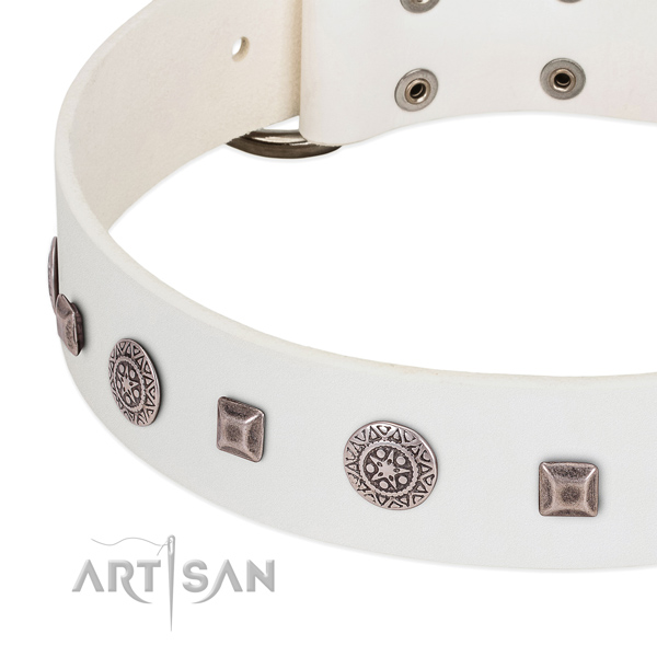 Unique dog collar of full grain genuine leather with studs