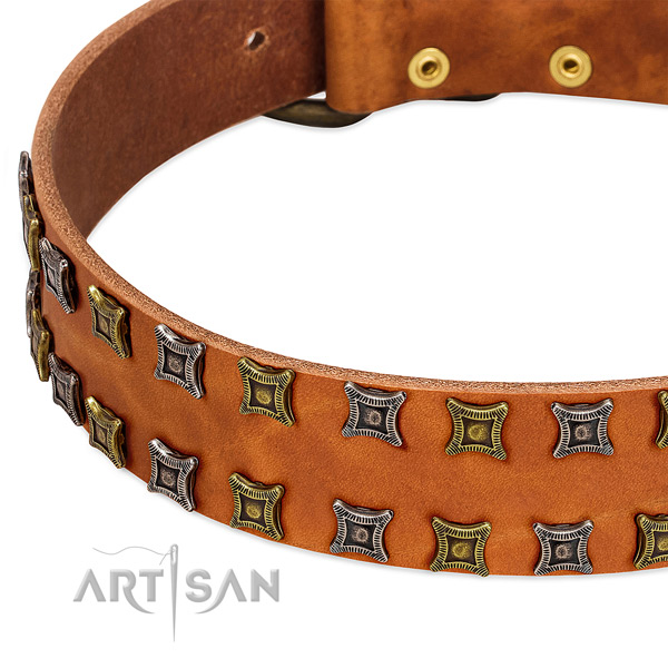 Flexible full grain leather dog collar for your handsome canine