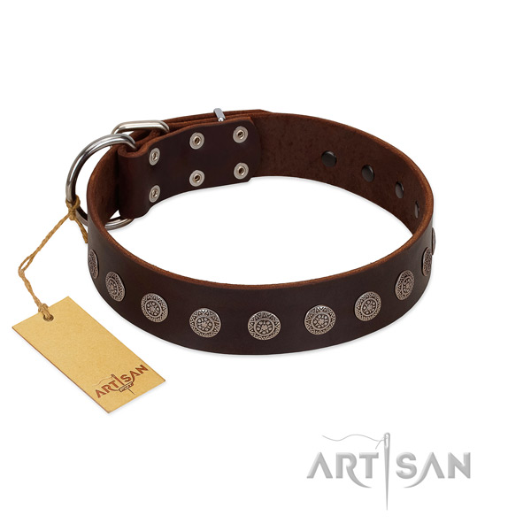 Incredible leather collar for your doggie