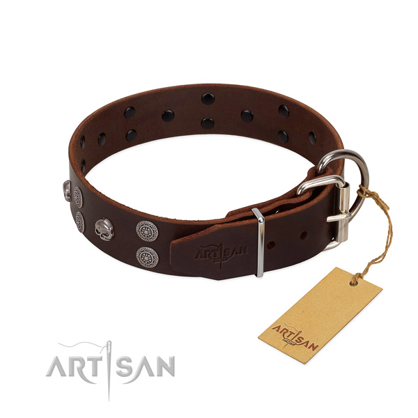Top notch leather dog collar with decorations for handy use