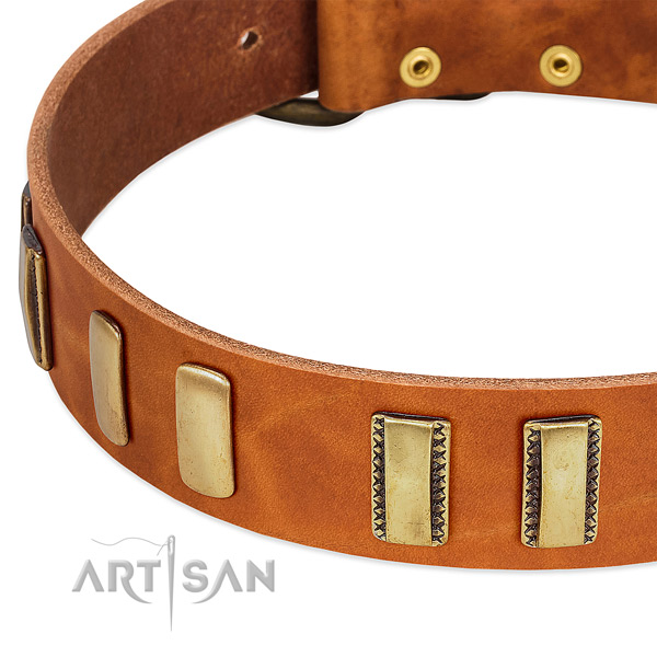 Top rate leather dog collar with embellishments for comfortable wearing