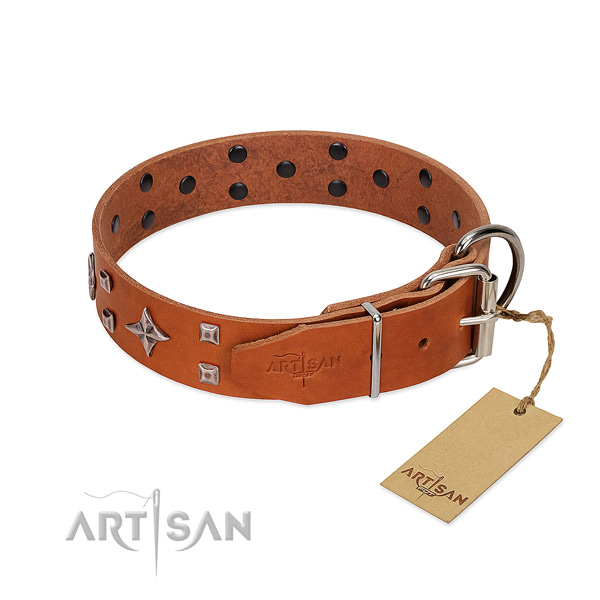 Unusual full grain natural leather collar for your canine everyday walking