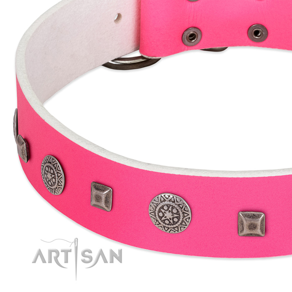 Top notch natural leather collar with embellishments for your canine