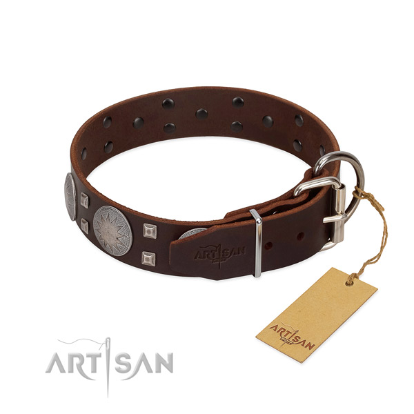 Awesome genuine leather dog collar for walking your canine