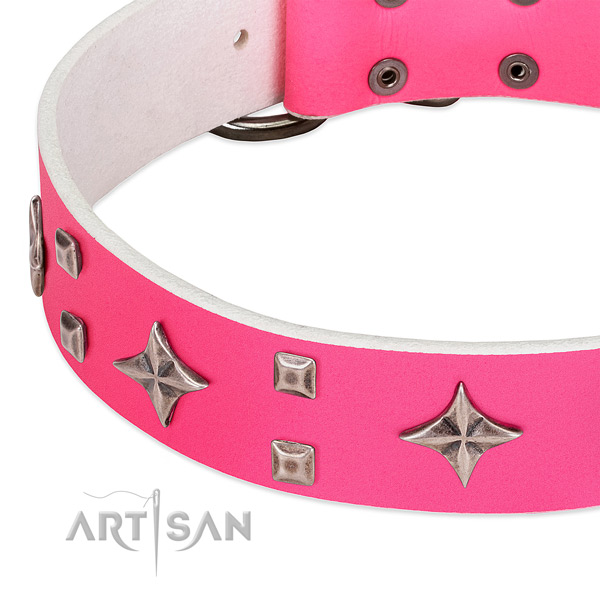 Fancy walking top notch full grain genuine leather dog collar with studs