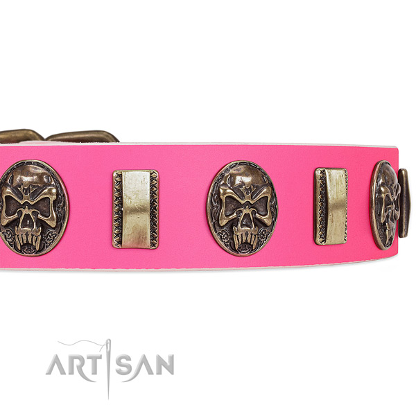 Reliable buckle on leather dog collar for your canine