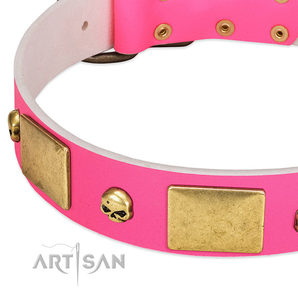 Strong leather collar with rust resistant adornments for your pet