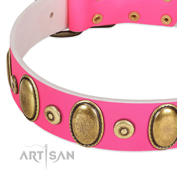 Durable full grain leather collar with rust resistant adornments for your dog