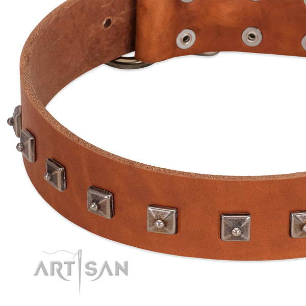 Best quality leather dog collar with incredible studs
