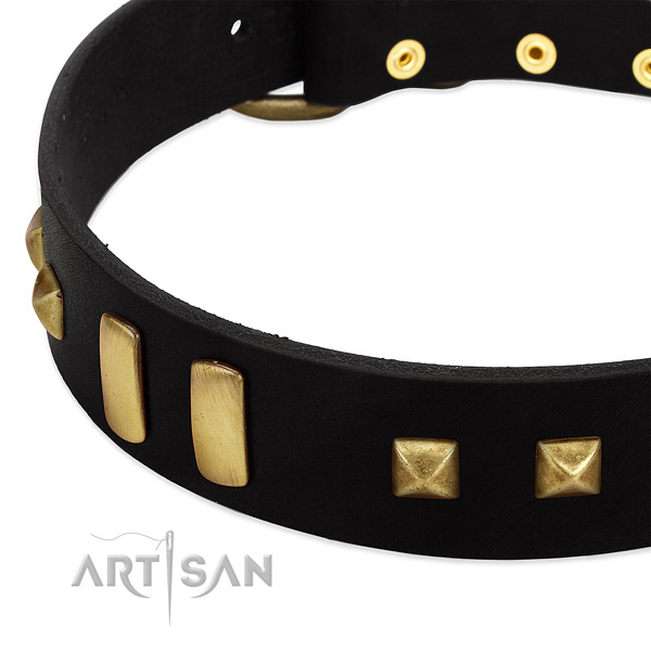 Soft genuine leather dog collar with embellishments for walking
