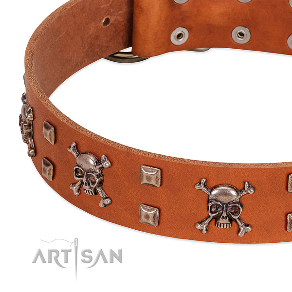 Trendy natural leather collar for your doggie