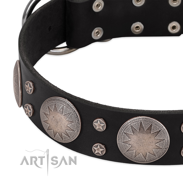 Soft genuine leather dog collar with studs for your handsome four-legged friend