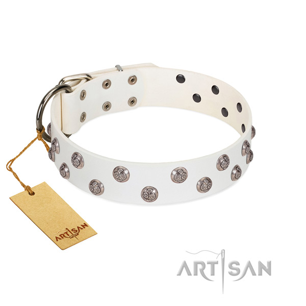 Exquisite genuine leather dog collar with corrosion proof hardware