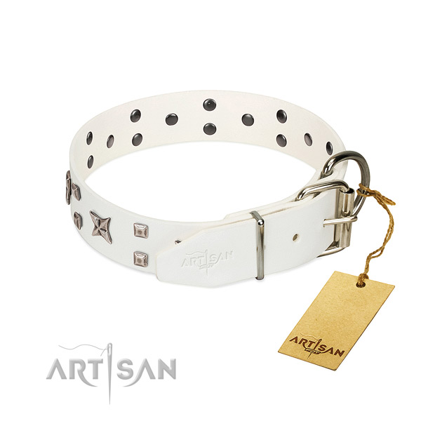 Quality full grain natural leather dog collar with fashionable adornments
